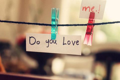 不想再爱了