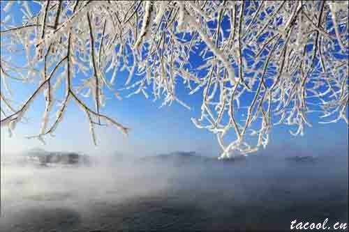 是冬成就了雪,还是雪美丽了冬