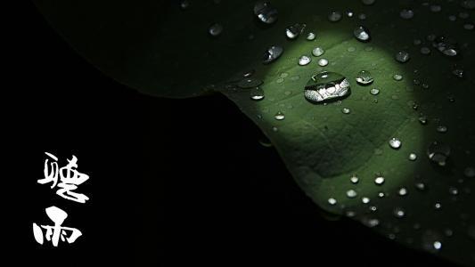心情散文:听雨