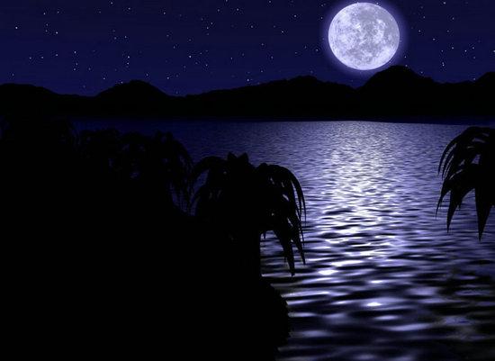 描写月色的句子
