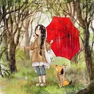 细雨蒙蒙,独享惬意悠闲