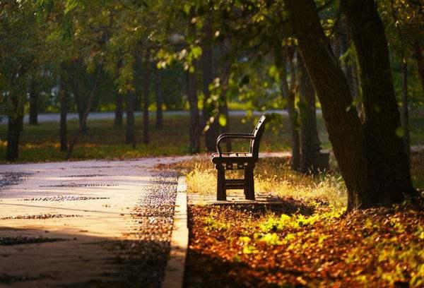 最是秋日又黄昏