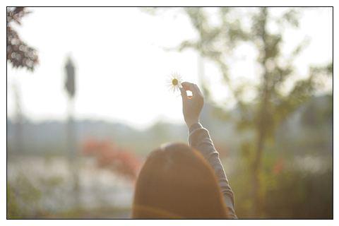 追逐梦想,绽放人生