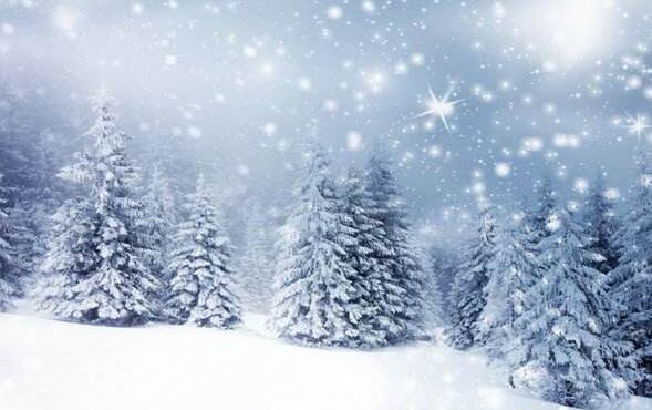 描写冬天的散文名段