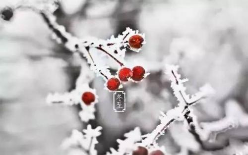 关于冬至的美文