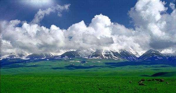 新疆大美,就连小毛驴也有尊严