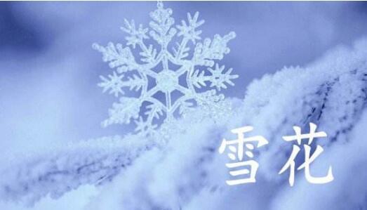 雪花飞舞冬意浓