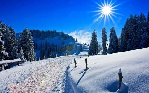 描写冬天下雪的场景句子大全