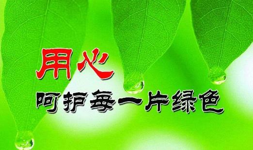 关于保护环境的宣传语50字
