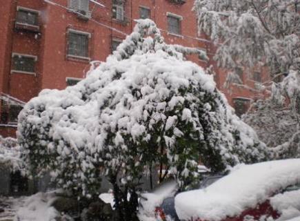 北京的冬天