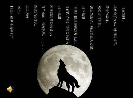 读《狼王梦》有感五篇