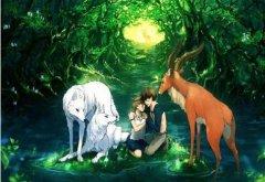 鹿和狼的故事读后感