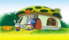 小兔运南瓜看图写话一年级