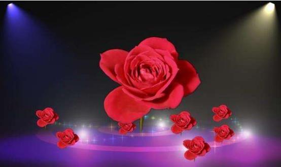短篇经典励志文章,是玫瑰总会绽放