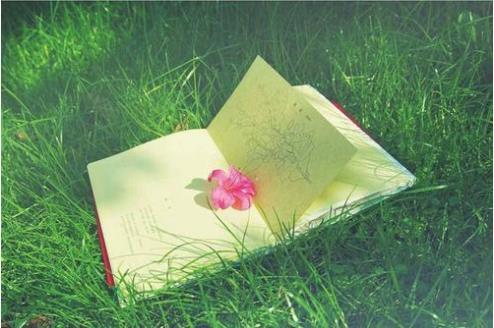给宝宝的第一封情书