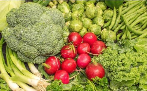 李晓栋:用面粉和蔬菜拍出手机大片